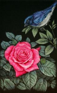 青い鳥と赤い薔薇