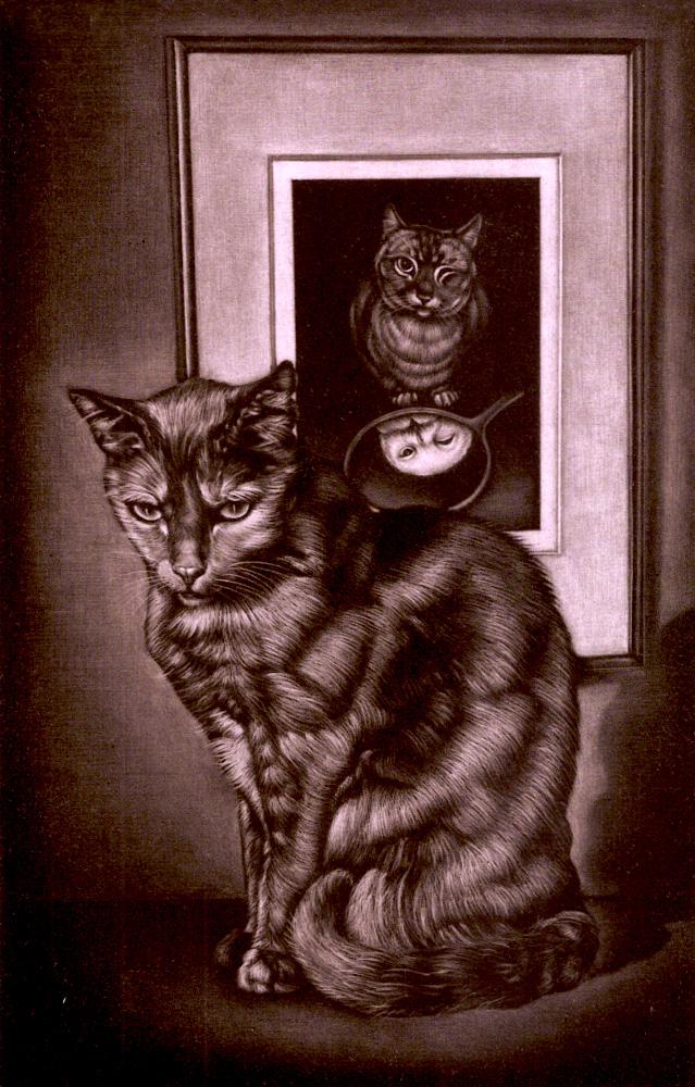 ミヌの部屋の猫