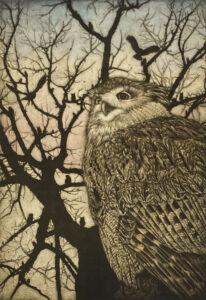 生田宏司 King of Owls